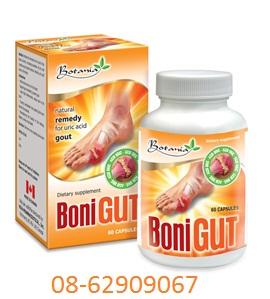 BONI GOUT- Dùng để chữa bệnh GOUT- hiệu quả tốt, giá rẻ