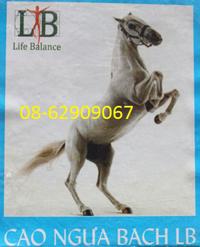 Cao Ngựa BẠCH-+- Giúp mạnh gân cốt, hết đau nhức, bồi bổ sức khỏe