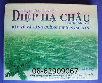 Diệp Hạ Châu, chất lượng nhất- Để Giúp hạ men gan, ưa dùng hiện nay