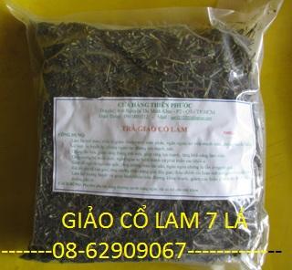 Giảo cổ Lam 7 Lá-Để Giảm mỡ, chữa tiểu đường, hạ cholesterol, tăng đề kháng