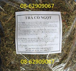 Trà cỏ Ngọt-Dùng cho người béo phì, bị bênh tiểu đường, cao huyết áp dùng