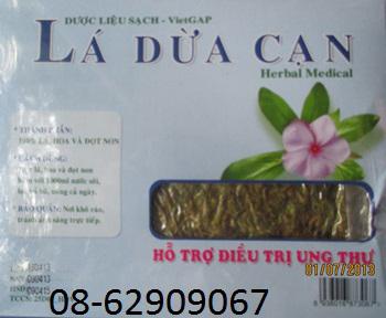 Bán Lá Cây dừa Cạn-Sản phẩm Hỗ trợ điều trị ung thư, kết quả -, giá rẻ