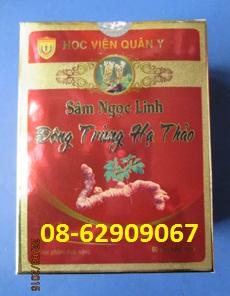 Đông Trùng Hạ Thảo, SÂM-Bồi bổ cơ thể tốt, Tăng sinh lý, sức đề kháng tốt